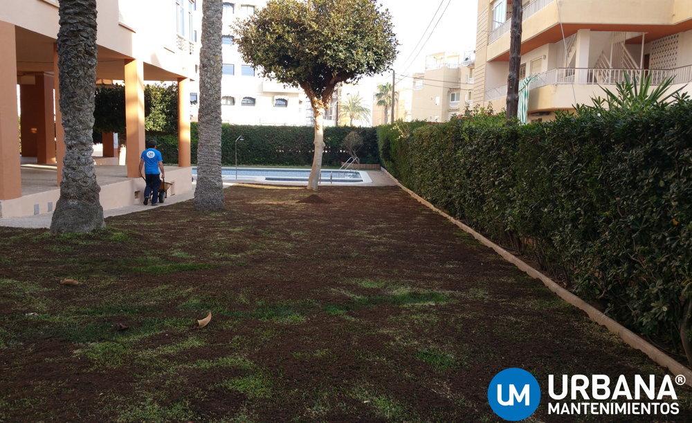 Empresa de jardiner a en alicante urbana mantenimientos for Mantenimiento jardines