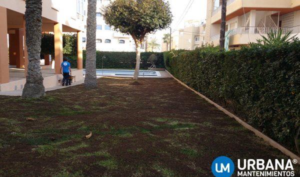 mantenimiento-jardin